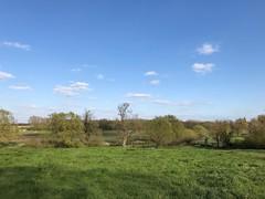 Grantchester Meadows (birdsey7) Tags: 2019pad