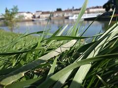 Nature (Guillaume Auberget) Tags: nature verdure eau water châlonsursaône