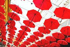 Red Umbrellas (Anselmo Portes) Tags: belgrade serbia sérvia easterneurope centraleurope balkan balkans balcãs umbrellas guardachuva umbrella repetition repetição pattern padrão vermelho red redumbrellas guardachuvasvermelhos