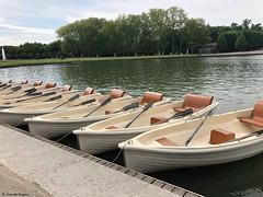 des-barques© (alexandrarougeron) Tags: photo alexandra rougeron