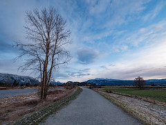 Good Ole Pitt Meadows (`James Wheeler) Tags: pitt meadows british columbia bc canada tree road sky landscape grass cloud path nature outdoors rural countryside country trail river water field mountain noperson outdoor naturallandscape gravel lane labelblue