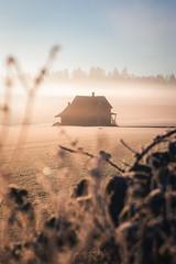 Langley Nature (kadenvb) Tags: langley fortlangley nature landscape landscapes canon tokina bc britishcolumbia canada rays sunrays ray mushroom mushrooms macro wildlife squirrel eagle baldeagle barn homestead fog sunrise sunset
