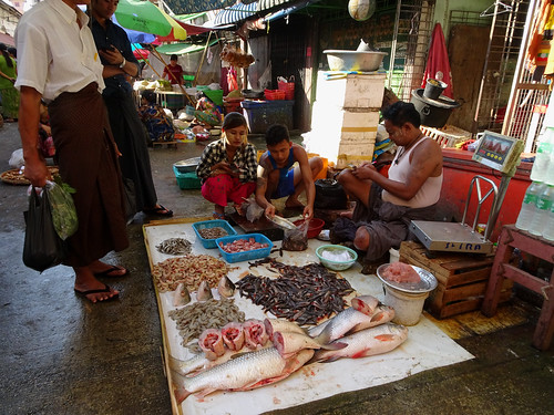 Selling fish at the 26 Street market in Yangon