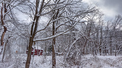 Storm is Over (blazer8696) Tags: 2019 brookfield ct connecticut ecw fporch obtusehill scott t2019 usa unitedstates wayne snow storm winter hdr img37888990natural