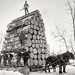 JACKS Northern MI Lumber Jacks Michigan circa 1890s Logging a big load 8x10 inch dry plate glass negative from the wonderful Detroit Publishing Company.