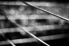 Transmitting On All Frequencies (belleshaw) Tags: blackandwhite downtownriverside fence wires chrome metal shine crossing coiled detail texture abstract barrier