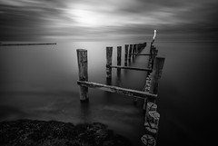 Baltic sea fine art (mad_airbrush) Tags: 5d 5dmarkiii germany deutschland mecklenburgvorpommern ostsee balticsea bw blackwhite schwarzweiss sw water smoothwater smooth nd ndfilter filter haida haidafilters formatthitech pier oldpier seebrücke altersteg old abandoned landscape langzeitbelichtung landschaft dramatic zingst holiday norden north 1740mm ef1740mmf4lusm canon fineart