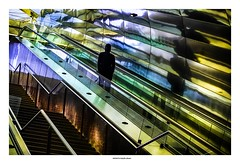 Go Down In The Darkness... (michel di Méglio) Tags: couleurs colors olympus metro subway marseille reflection street stairway