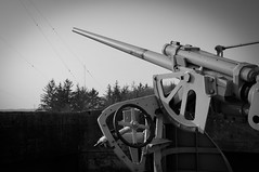 Artillery Cannon in B&W (Carl Terlak) Tags: sony denmark bw