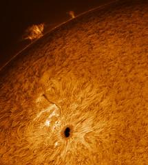 AR2738 pano (plndrw) Tags: zwo ha hydrogenalpha televue televue25xbarlow sun solar sunspot prominence