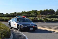 CHEVROLET Impala SS - 1994 (SASSAchris) Tags: chevrolet impala ss voiture américaine 10000 tours castellet circuit ricard police sheriff