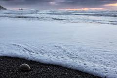 Stone (D. Inscho) Tags: lapush pacific ocean water depthoffield pacificnorthwest washington washingtoncoast seastack beach stone