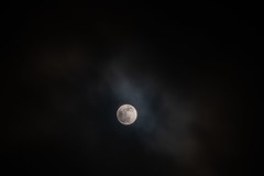 Full Moon in the Clouds (Tony Webster) Tags: minnesota superbloodwolfmoon tonywebster eclipse lunareclipse moon superblood supermoon wolfmoon eastlake unitedstatesofamerica us