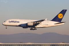 Lufthansa (ab-planepictures) Tags: flugzeug airline airport aviation flughafen fra eddf frankfurt aircraft plane planespotting