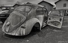 Lost Käfer (seanavigatorsson) Tags: cars auto vw volkswagen käfer bug beetle