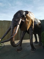 Mammoth (daveandlyn1) Tags: mammoth animal thebritishironworkscentre nroswestry queenshead a5 smartphone psdigitalcamera cameraphone pralx1 p8lite2017 huawei
