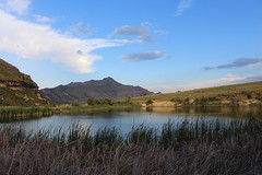Mountain Scenery (Rckr88) Tags: clarens freestate southafrica free state south africa mountain scenery mountainscenery mountains lake lakes dam dams reed reeds greenery grass green nature outdoors travel travelling