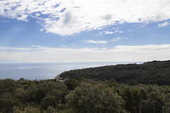 holly oak forest (cyberjani) Tags: adriatic sea istria wave coast beach rock water sky bay tree grass shore landscape cliff