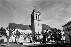 Eglise St-Martin de Dammartin-en-Serve (Philippe_28) Tags: 78 dammartinenserve yvelines france europe iledefrance église church 24x36 argentique analogue camera photography film 135