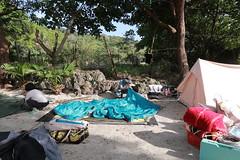 IMG_7303 (諾雅爾菲) Tags: taiwan camping 台灣 墾丁 露營 香蕉灣原始林露營區 熊帳 coleman 印地安帳