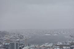 Seattle Snowmageddon 2019 8 (C.M. Keiner) Tags: seattle washington usa city cityscape skyline mountains pacific northwest puget sound snow blizzard winter storm urban