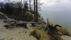 Lost Horizon (Tom Gill.) Tags: dune sanddune lake greatlakes lakemichigan vanburen ridge statepark