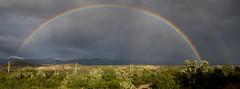 Rainbow over the San Pedro River Valley, SE of San Manuel, AZ (Lon&Queta) Tags: 2016 arizona cacti desert flickr gps landscapes mountains panoramic pinalcounty rainbows saguarocactuscarnegieagigantea sanpedrorivervalley specialsize usa unitedstatesofamerica