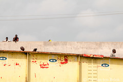 The bridge (10b travelling / Carsten ten Brink) Tags: 10btravelling 2017 africa african afrika afrique carstentenbrink elmina genericplaces ghana ghanaian goldcoast gulfofguinea iptcbasic oldtown otherkeywords places westafrica bridge coast fishmarket harbour market shore tenbrink