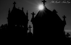 Cemetery Silhouette and Winter Sun.... (darkangel1910) Tags: silhouette winter sun cemetery cemeteries cimetière cimitero friedhof passion photography gothic graveyard grabmal grabstätte gedenksteine grabmäler gravestones fotografie friedhöfe forthelovetothedetail schwarzundweis stille momente blackandwhite begraafplaats france silent moments leidenschaft love liebe liebezurfotografie lightandshadow lichtundschatten liebezumdetail light licht schatten crosses cold darkness düster detail death dunkel dark schwarz metz europa europe ruhe vergänglichkeit nature fog nebel