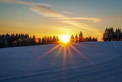 Sunrise (A.K. 90) Tags: schiefergebirge thüringen e18135mm3556oss sonyalpha6300 hinmel sky bäume tree gelb rot redyelloworange outside schnee snow landschaft natur landscape nature licht sonne morgen morning sonnenaufgang sunrise sun light