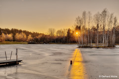 Auensee in ice dress (GerWi) Tags: sun sonne sunset sonnenuntergang eisfläche auensee wasser baumgruppe sonnenstrahlen fz1000 lichtstrahl lightgap