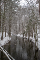 quabbinreservoir2019-96 (gtxjimmy) Tags: nikond7500 nikon d7500 winter snow quabbinreservoir swiftriver ware belchertown massachusetts watersupply newengland quabbin