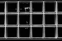 DSC_5380 glass blocks - urban minimalist geometry (Filip Patock) Tags: glass block urban geometry geometric lines symetry photography blackwhite bw nikond3200 high contrast minimalism architecture abstract