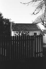 Santa Clara (bior) Tags: leicam3 leica santaclara suburbs plusx kodakplusx 125px expiredfilm fence cactus house