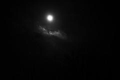 DSCF4024.jpg (madaday) Tags: nightsky lunareclipse space sky night moon stars filters edited