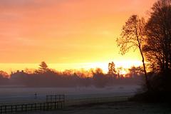 Sunrise, York Knavesmire (robin denton) Tags: sunrise york knavesmire knavesmirewoods racecourse yorkshirelandscape landscape