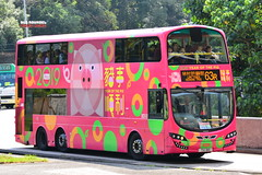 KMB Wright Volvo B9TL TH1110 2019 Year of The Pig (Bus Roundel Hong Kong - Fb me!) Tags: kmb wright volvo b9tl th1110 2019 year the pig