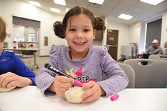Beetles Rock, CC 2.9.19 (slcl events) Tags: beetlesrock butterflyhouse thebutterflyhouse beetles cliffcavebranch cliffcave slcl stlouiscountylibrary library libraryprogram children childrensprograms kids livebeetles diversity