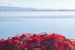 "Lungomare ""Caduti Nassyria"", Sant'Antioco (Francesca Murroni ┃Wildlife Photographer) Tags: fishnets santantioco porto port sea landscape seascape sulcis sardegna sardinia"