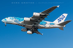 ANA_A380_JA381A_20190214_XFW-3 (Dirk Grothe | Aviation Photography) Tags: ana all nippon airways a380 ja381a xfw turtle