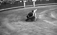 Matador (Arne Kuilman) Tags: lostandfound zimmermans photos photonotmine scan v600 epson holiday found gevonden bullfighting bullfighter arena past even spain bull matador