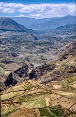 Peru, Colca canyon : Landscape #8 (foto_morgana) Tags: analogphotography analogefotografie aurorahdr2019 colcacanyon fujiprovia100f landscape lightroom mountainous nikoncoolscan outdoor panoramic peru photographieanalogue rural scenic southamerica terracedfields tourism travel travelexperience vuescan