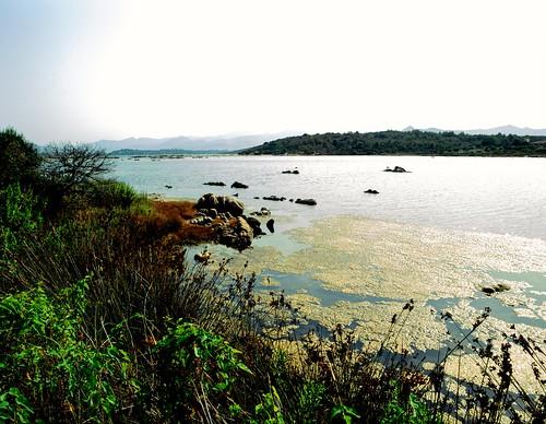 Sardinia - San Teodoro pond