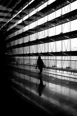 Fly her away (parenthesedemparenthese@yahoo.com) Tags: dem bn backlighting changi contemporaryarchitecture faã§ade femme hiver monochrome nb noiretblanc shadows silhouette singapore singapoure street woman airport blackandwhite blancoynegro bnw byn canon600d ef24mmf28 geometrical ilenbetwen indoor loneliness seule streetphotography