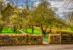 Blossom Trees (Kev Walker ¦ 10 Million Views..Thank You) Tags: architecture clouds england lancashire outdoor sky snow town village aitken barley beautiful beautifulvillage blacko bluesky british buildings cloudy cold council covered crossroad downham english famous floralforeground hill houses icon information landscape near nelson parish parks path pendle rural sign signpost street sunny symbols tourism travel under urban view walking weather winter wood