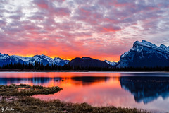 Splendid Morning (zachary.locks) Tags: ab alberta banff beautiful big blue canada capped clouds colorful early fire grass hour lakes morning mount mountains mt national orange park reflection rundle snow splendid sunrise water yellow zlocks 52frames vermilion