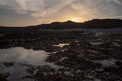 _19A4770 (stuleeds) Tags: coast kilkebeach kilvebeach leefilter somerset sunrise
