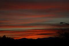 Sunrise 1 16 19 #03 (Az Skies Photography) Tags: sun sky skyline skyscape rio rico arizona az riorico rioricoaz arizonasky arizonaskyline arizonaskyscape cloud clouds red orange gold salmon black january 16 2019 january162019 11619 1162019 canon eos 80d canoneos80d eos80d canon80d arizonasunrise rise sunrise morning dawn
