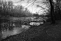 Peto jezero (roksoslav) Tags: zagreb croatia 2019 nikon z6 nikkorz2470mmf4s maksimir lake jezero