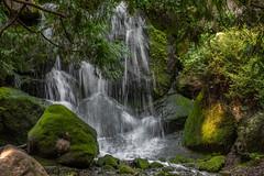 2018_08_11-_D855154.jpg (cschafe07) Tags: seasons summer chaska landscape waterfall mnlandscapearboretum carvercounty moss rocks water unitedstates weather places minnesota